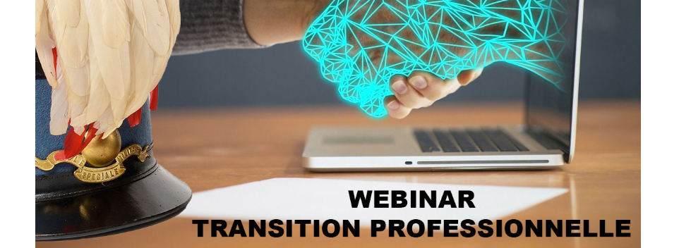 Webinar - Management de transition - Interventions Nicolas HOSTEIN & Christophe DEGIGANON